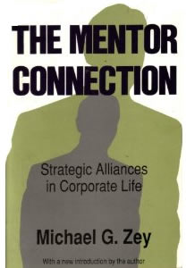 Purchase the Mentor Connection from Amazon.com